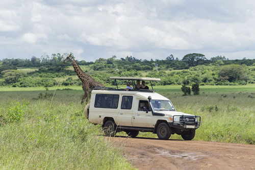 safari trips in Kenya